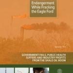 FULL-RecklessEndangerment-cover_250_324_s