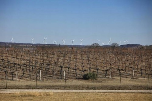 Arché winery in Montague County with wind farm in background. Dallas Morning News photo