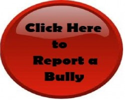 bully_report