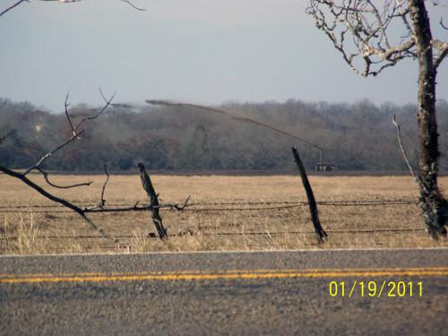 Landfarming photo in Booger